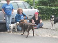 10. + 11.07.2012 - Des Hundetrainers Hunde